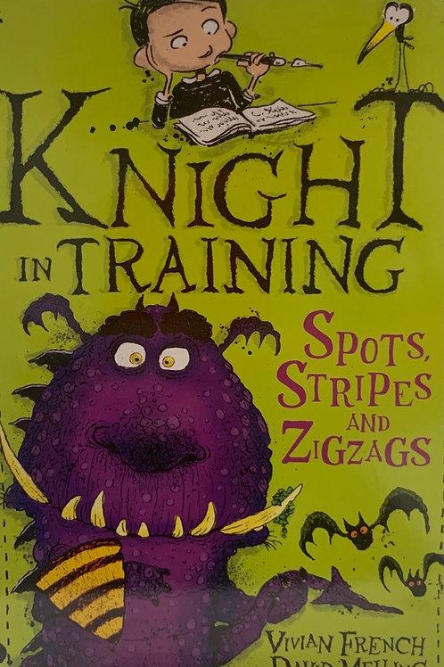 Knight in Training Spots Stripes and Zigzags
