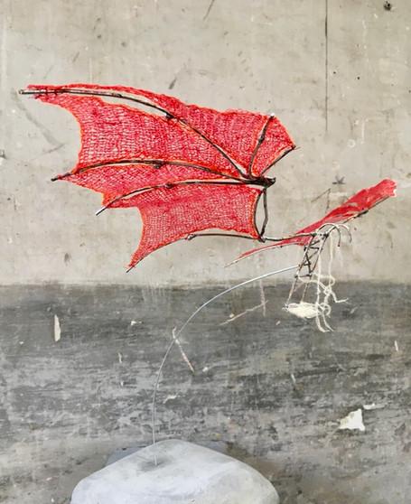 'Wings'