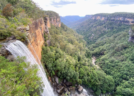 Fitzroy Falls Waterfall Day Tour Sydney
