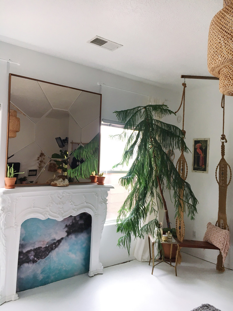 bringing nature indoors in an unexpected way