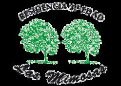 TJTAMIMOSASlogo-20121.png