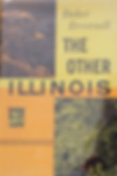 The Other Illinois