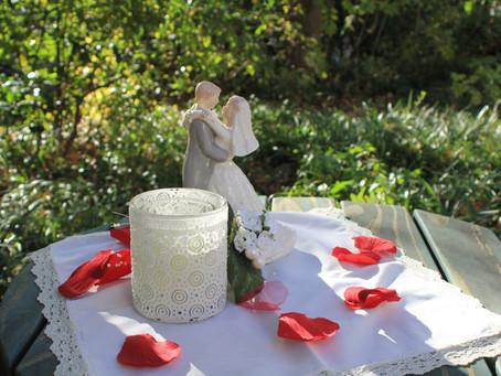 Azalea Weddings -Ft Worth- Great for Millennials