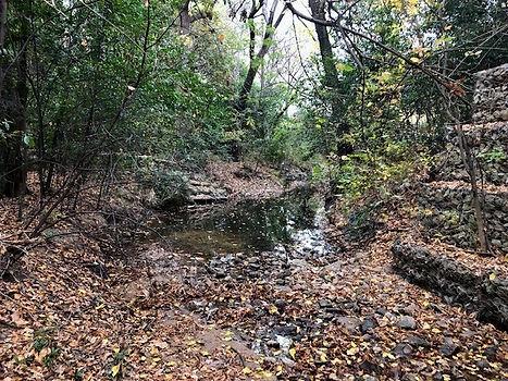 Azalea-creek%20wall%202_edited.jpg