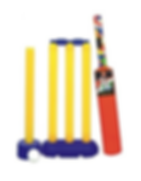 Cricket Set