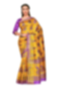 Women's Sari 25