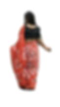 Women's Sari 53
