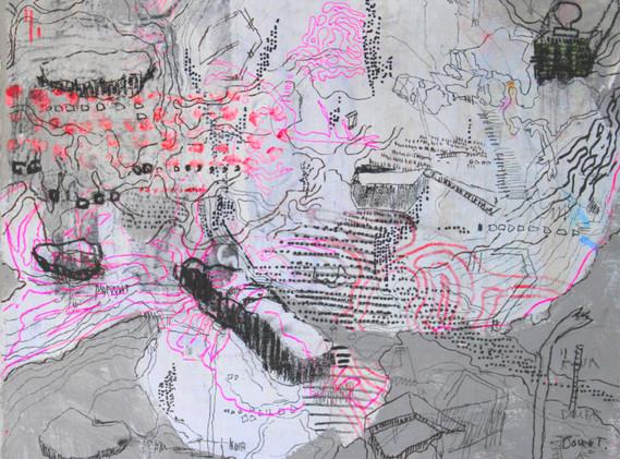 image_4.3_naomimiddelmann_transient_land