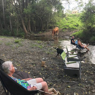 creek swim.jpg