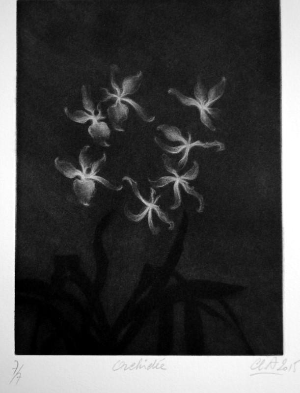 Orchidée3
