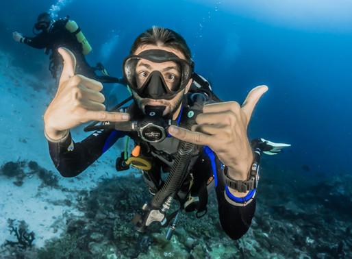 Beginners Can Dive in Raja Ampat