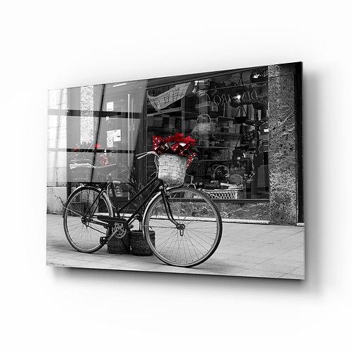 Bicycle UV Printed Glass Painting