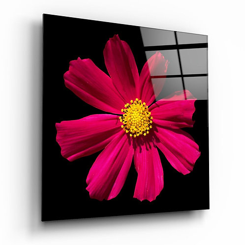 Red flower UV Printed Glass Painting