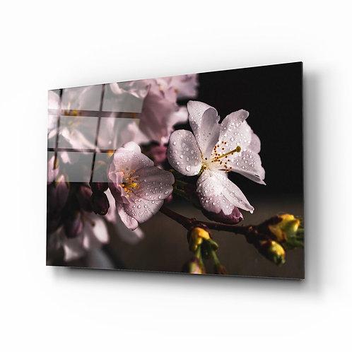 Macro Flower Glass Printing