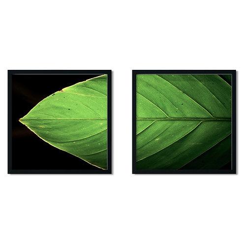 Green Leaf Framed Painting