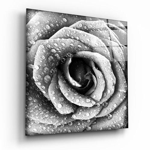 Rose UV Printed Glass Painting