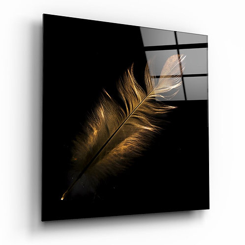 Colorful Feather UV Printed Glass Painting