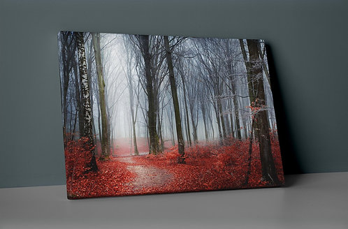 Red Forest Canvas Printings