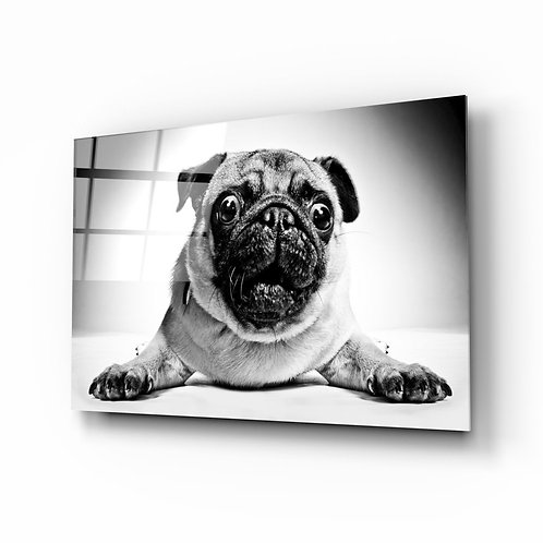 Pug UV Printed Glass Printing