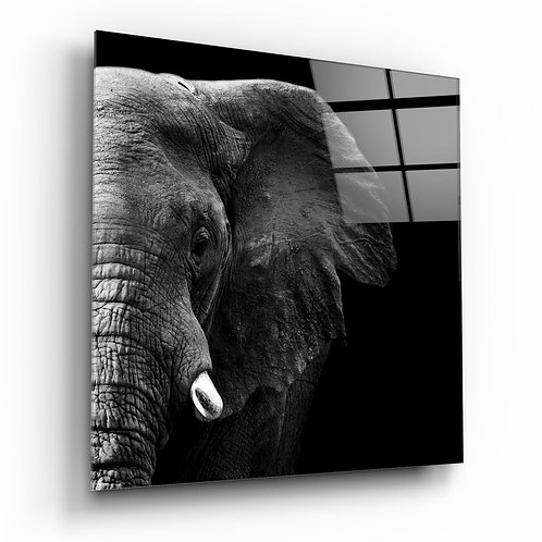 Elephant UV Printed Glass Printing
