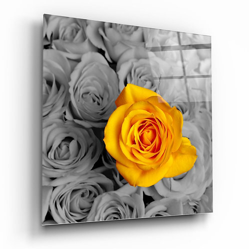 Yellow Rose UV Printed Glass Printing