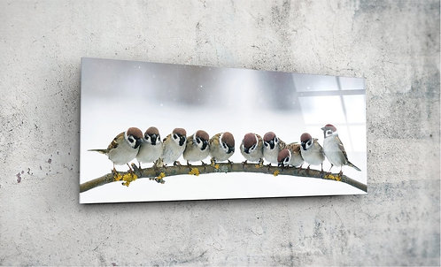 Birds  UV Glass Printing