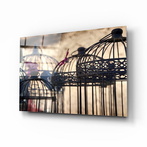 Brid Cage UV Printed Glass Painting