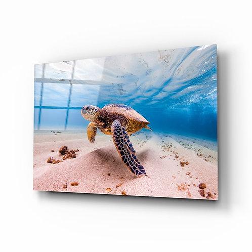 Turtle UV Printed Glass Painting