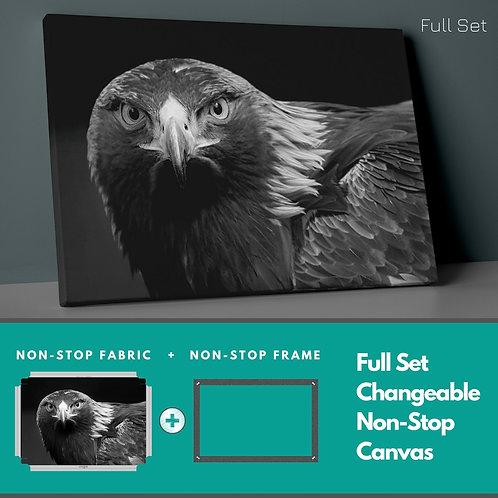 Hawk Non-Stop Canvas Printings