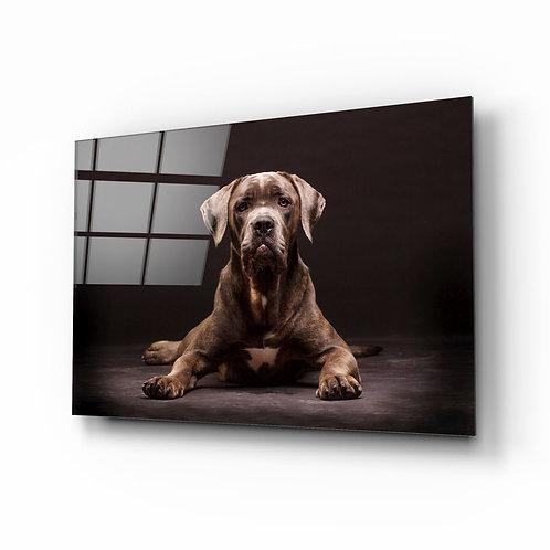 Dog UV Printed Glass Printing