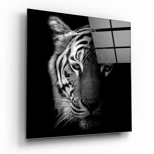 Tiger UV Printed Glass Printing