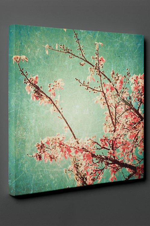 Tree Branches Canvas Printings