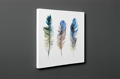 Feather Canvas Printings