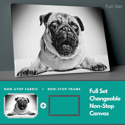 Cute Dog Non-Stop Canvas Printings