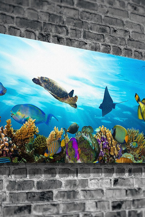Aquarium  Canvas Printings