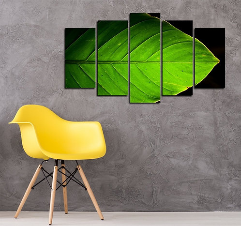 Green leaf 5 Pieces MDF Painting