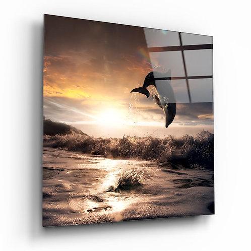 Dolphin UV Printed Glass Printing