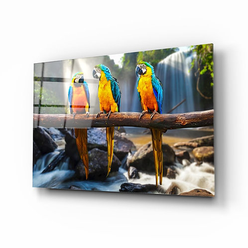 Parrots UV Printed Glass Painting