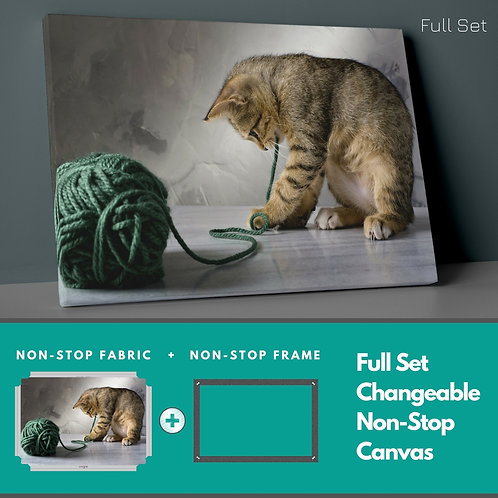 Cat And Cat Non-Stop Canvas Printings