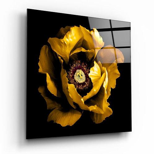 Floral Yellow UV Printed Glass Printing