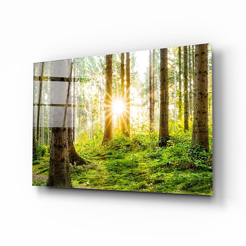 Forest UV Printed Glass Painting