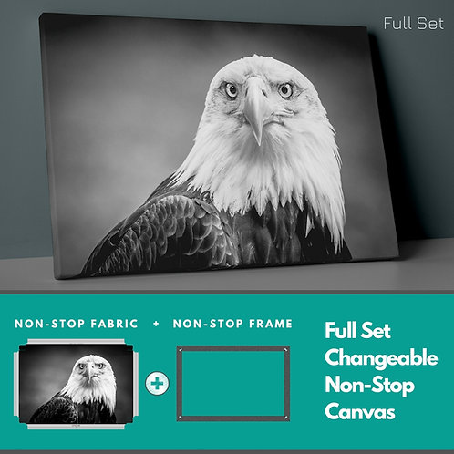 Eagle Non-Stop Canvas Printings