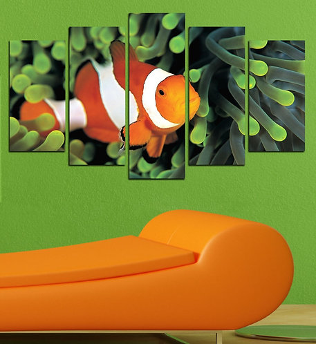 Clown fish 5 Pieces MDF Painting