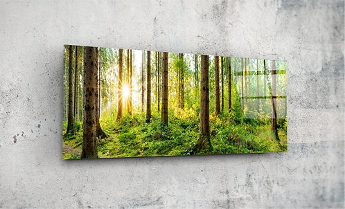 Forest  UV Glass Printing