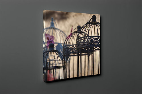Bird Cage Canvas Printings
