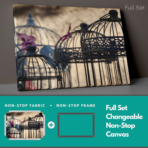 Vintage Cages Non-Stop Canvas Printings