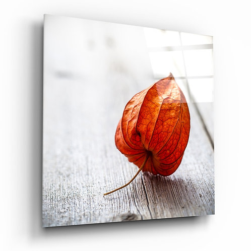 Dry Leaf Glass Printing