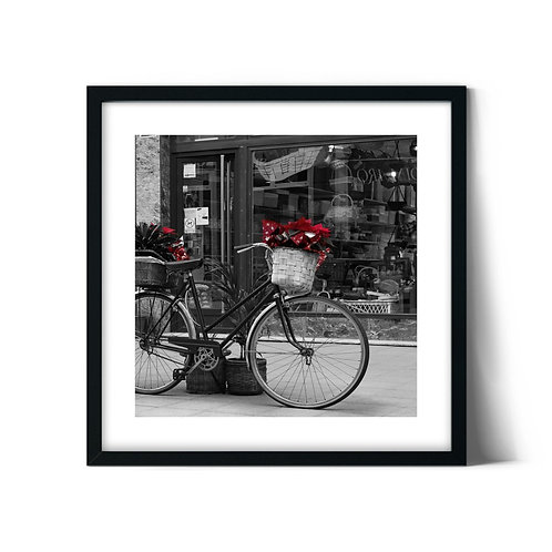Bicycle Framed Painting