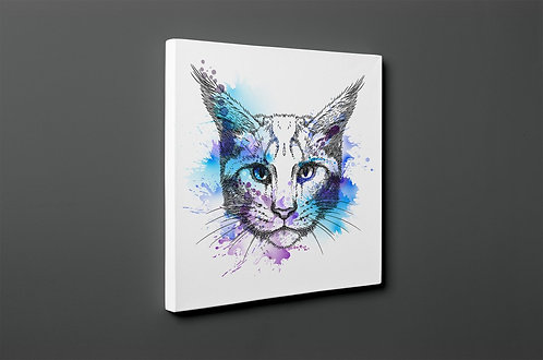 Cat Canvas Printings