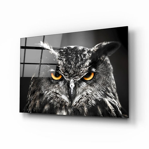 Owl UV Printed Glass Painting